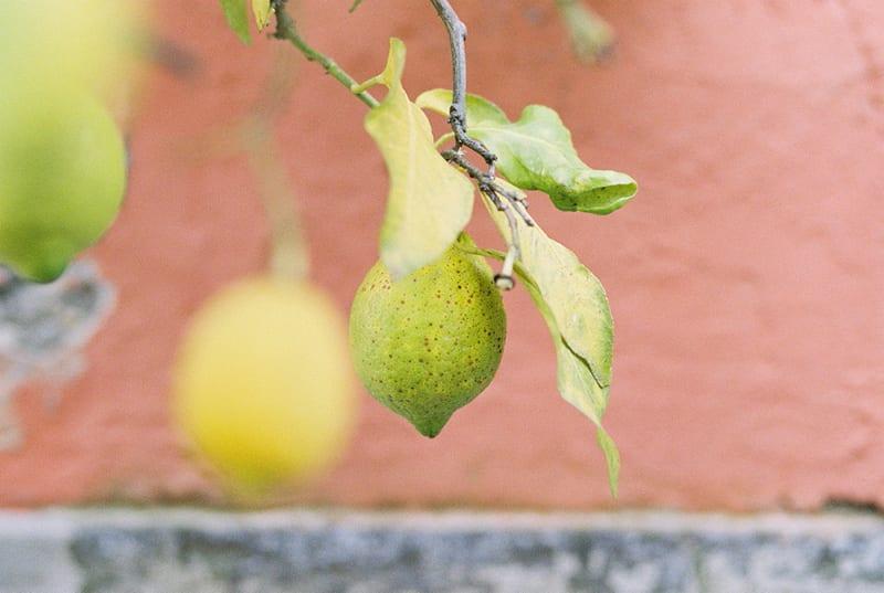 Italy wedding photography fruit