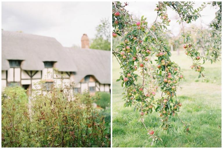 Anne Hathaway's Cottage Shakespeare