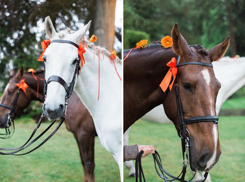 horses at Coworth Park